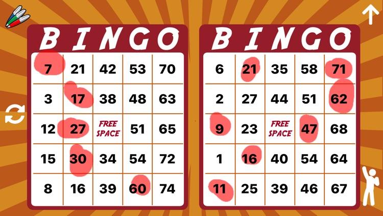 Bingo Caller - 75 & 90 Ball screenshot-3