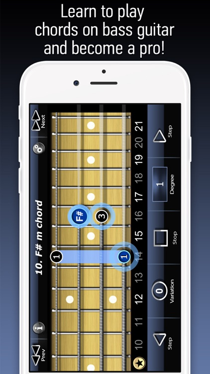 Bass Chords LE screenshot-0
