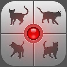 Activities of Human-to-Cat Translator