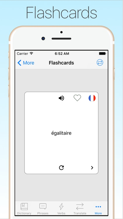 French Dictionary & Tran + screenshot-4