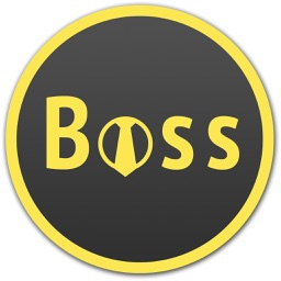 BOSS Small Business Accounting