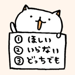 Quiz Cats
