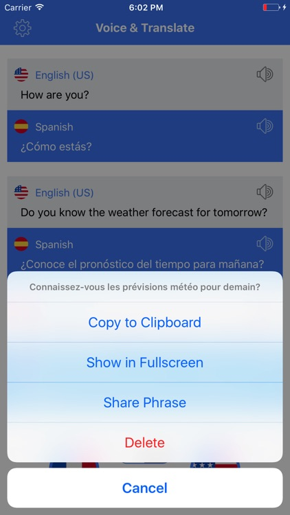 Speak Translate & Voice and Text Translator screenshot-3