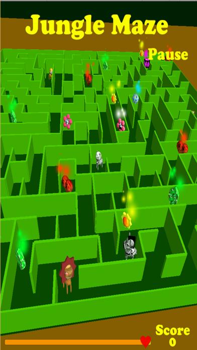 Jungle Maze Pro screenshot four