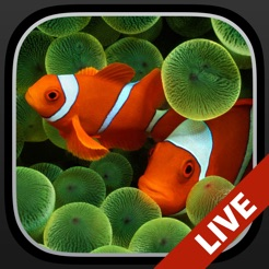 Aquarium moving wallpapers on the app store aquarium moving wallpapers 4 voltagebd Images