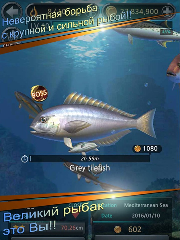 Рыболовный крючок для iPad