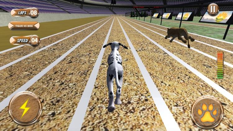 Greyhound Racing Tournament 2 screenshot-4
