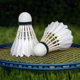 3D Badminton Sports Game