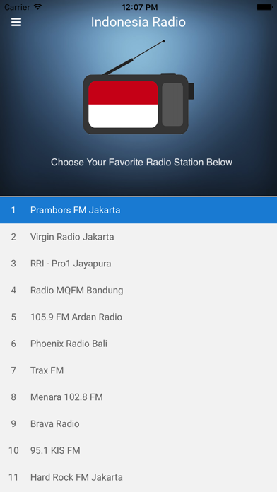Indonesia Radio Station FM screenshot four