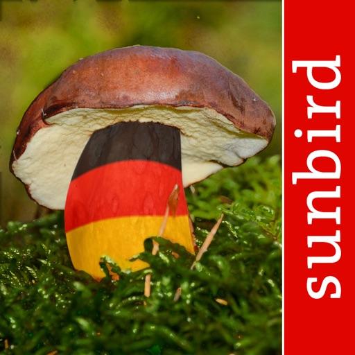 Pilzführer Deutschland, Pilze!
