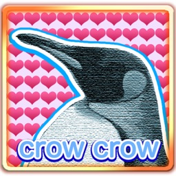 LovelyPenguin
