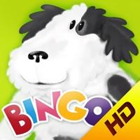 Codes for Bingo ABCs alphabet phonics HD Hack