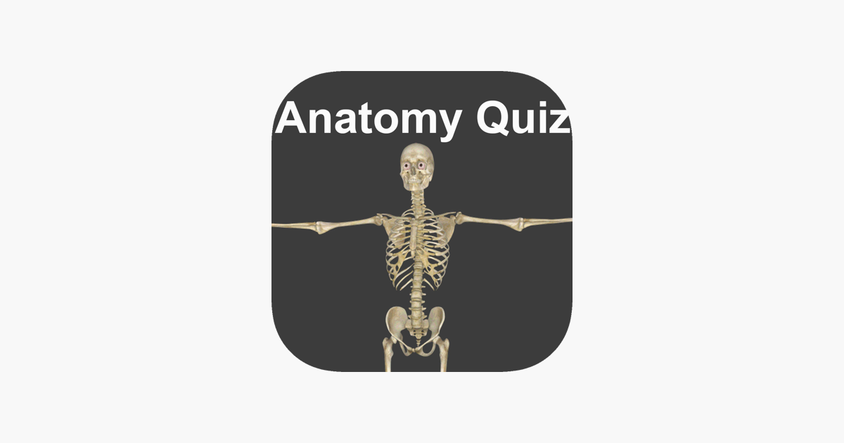 Anatomy Quizzes On The App Store