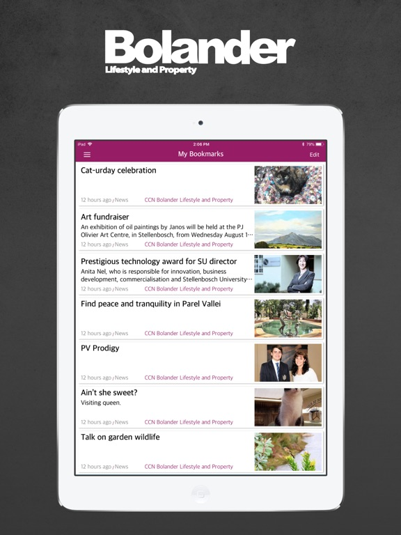 Image of Bolander Lifestyle for iPad