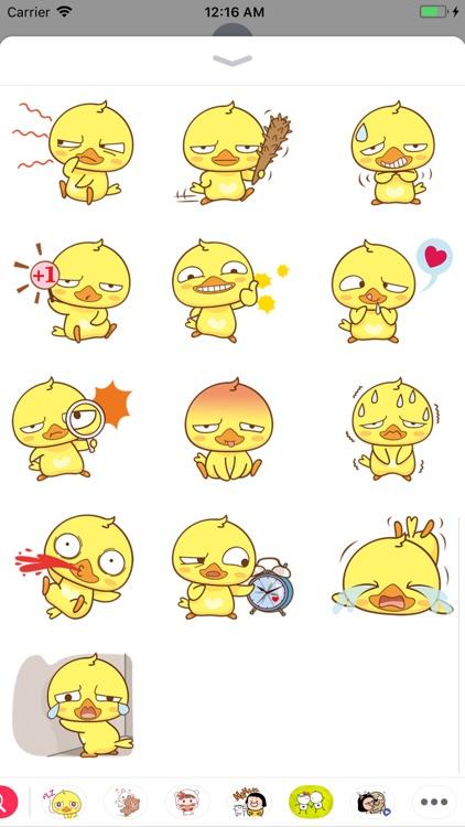 Yellow Baby Chicken Sticker screenshot-3