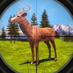 Deer Hunting: Sniper Shooting