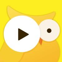 VideoBuzz