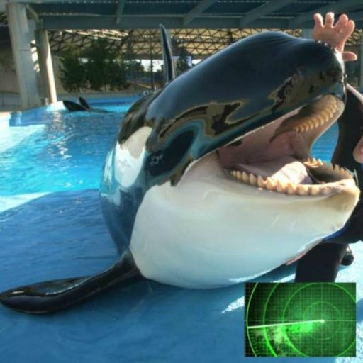 VR Guide: SeaWorld, Orlando FL