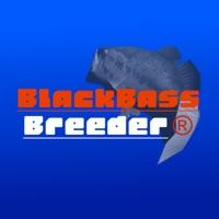 Codes for Black Bass Breeder Hack