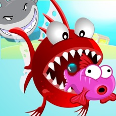 Activities of Sea Evolution - Shark Survival