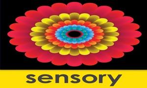 Sensory Mandala