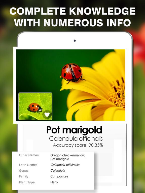 Smart Identifier: Plant+Insect screenshot 5