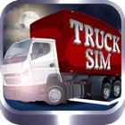 TruckSim: 3D Night Parking Simulator icon