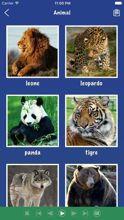 Italian Word Flashcards Learn