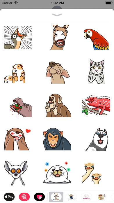 Funny Animals Animated screenshot two