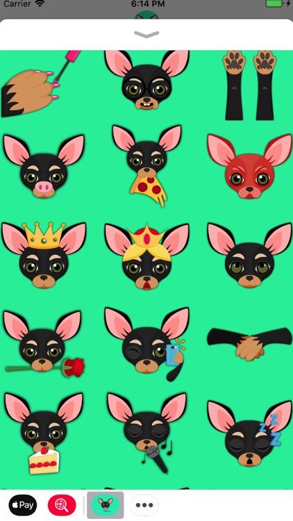Black Tan Chihuahua screenshot-3