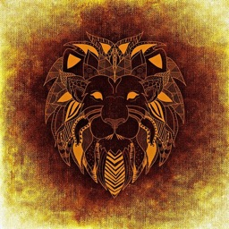 Lion Stickers - Sid Y