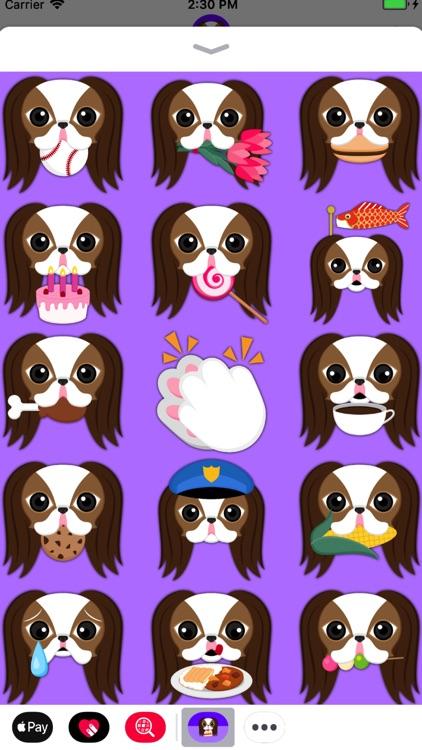 Brown White Japanese Chin screenshot-4