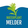 Waterplantmelder