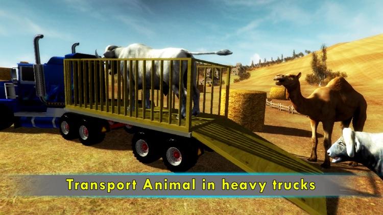 Eid Qurbani Animal Cargo Truck by Amjad Ali
