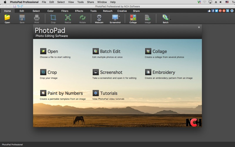 1_PhotoPad_Professional.jpg