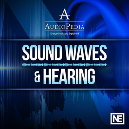 Sound Waves and Hearing 101