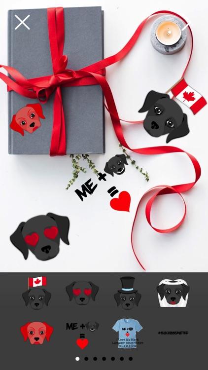 Black Labrador Photo Booth
