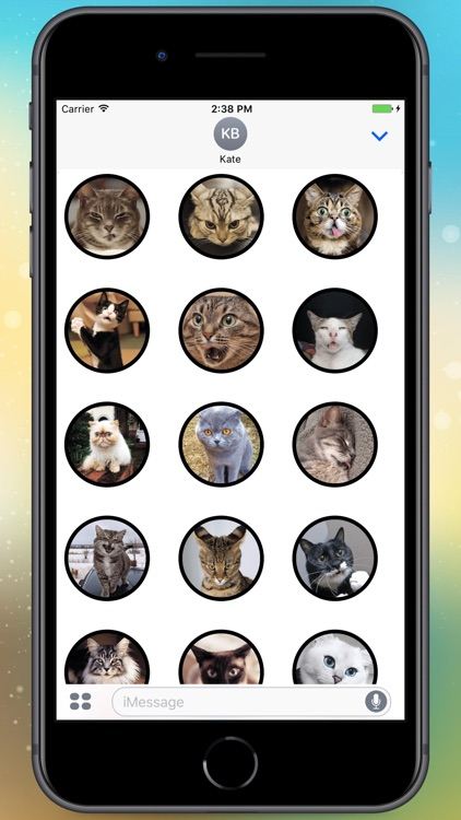 Funny Cats! Stickers