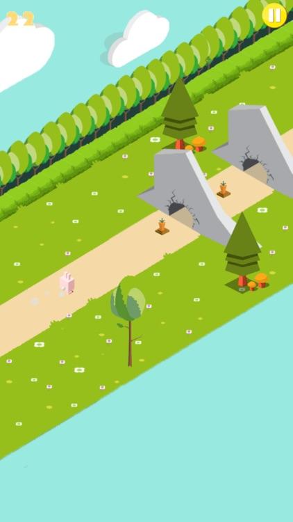 Run Sunny Bunny Run! screenshot-4