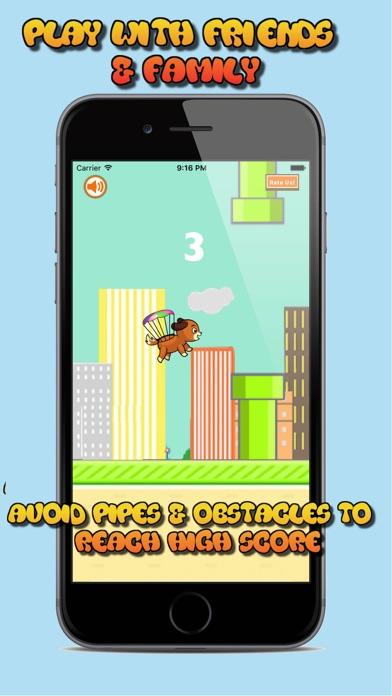 Air Puppy screenshot three