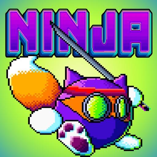Ninja Meow Cat