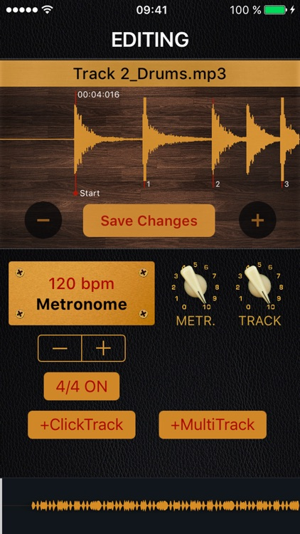 PLAYBACK With Metronome by Ivan Cherepanov