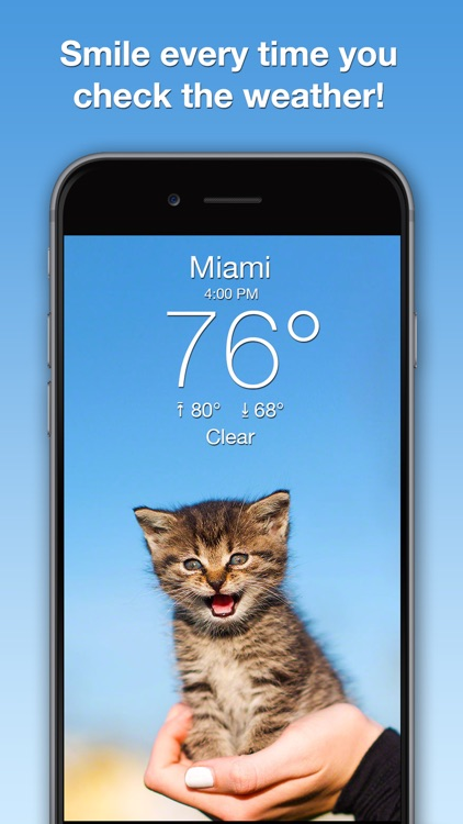 Weather Kitty: Forecast & Cats screenshot-0