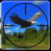 Wild Bird Hunter America