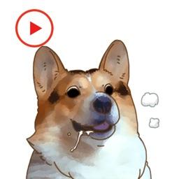 DogMoji Animated Stickers