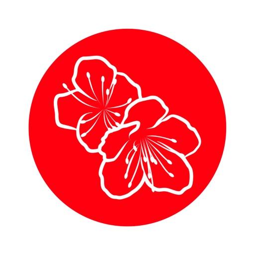 Сакура | Королев icon