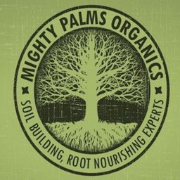 Mighty Palms