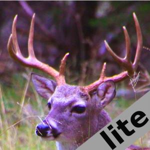 Deer Calls & Sounds lite Sports app