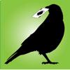 Corvid Apps LLC - OFC Poker artwork