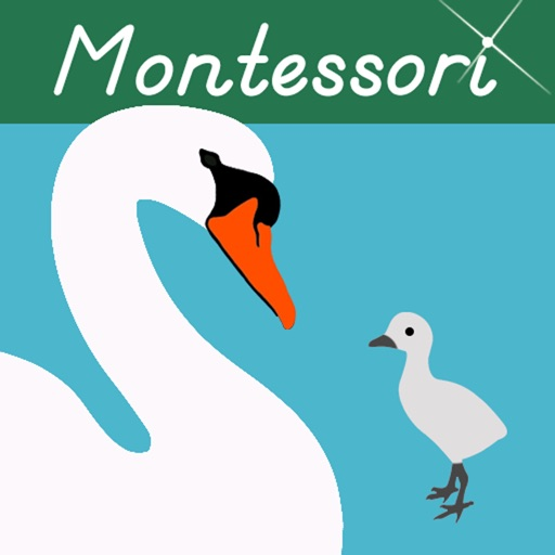 Baby Animals Montessori Vocab.